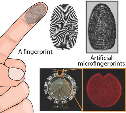 Anti-counterfeit polymers work like fingerprints