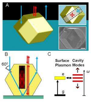 A polaritonic photonic crystal made by DNA-programmable assembly