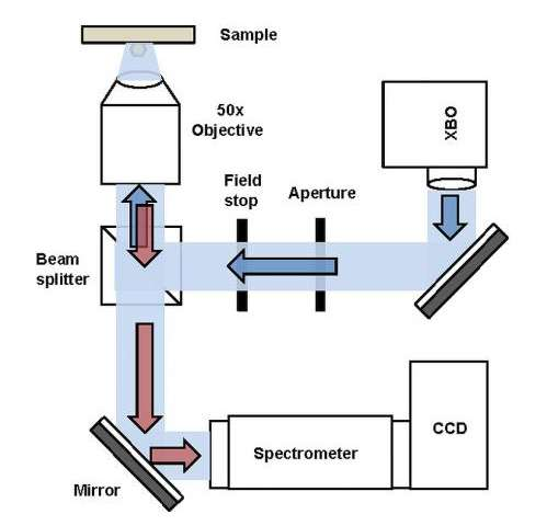 A schematic description of the backscattering signal detection setup