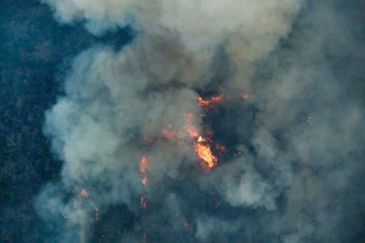 At two months old as of October 2015, the Arariboia fire may have been started by illegal loggers, and has consumed about 45 per