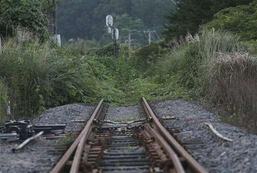 Railway to nowhere...