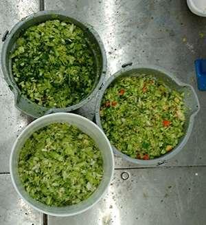 Desperdício Alimentar cover image