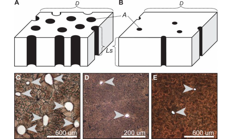 Eggshell porosity can be used to infer the type of nest for Built by nester