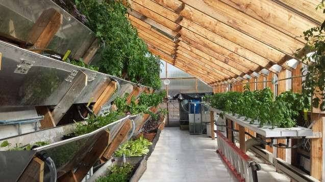 vertical farming turning agriculture upside down essay The vertical essay  and represents nearly 85% of all land that can support at least a minimum level of agricultural activity in addition, farming produces a wide variety of feed grains.