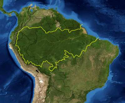 How can deforestation in the amazon rainforest be reduced?