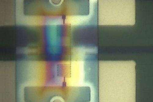 Packing single-photon detectors on an optical chip to create quantum-computational circuits