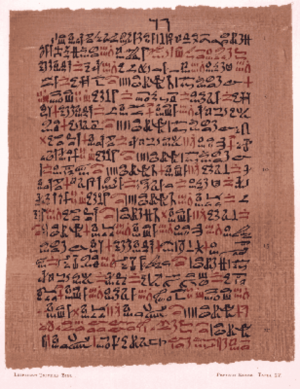 Paid sick days and physicians at work: ancient Egyptians had state-supported health care