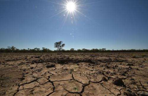 The Australian town of Walgett is at the centre of a crippling drought that has left farmers in the region battling for survival
