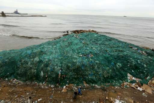 The build-up of plastic waste in the oceans can be deadly for marine life