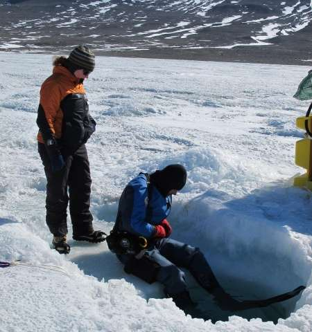 Antarctic microbes hold clue to Earth's oxygen