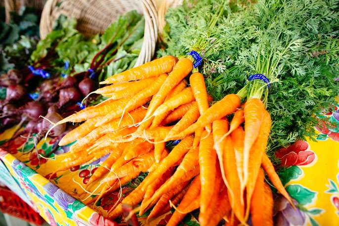 Environmental modelling of sustainability through local food