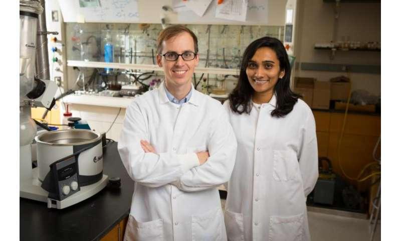 O prof. Tim Cook e sua orientanda, Anjula M. Kosswattaarachchi, num laboratório da Universidade de Buffalo. [Imagem: Douglas Levere/UB/Divulgação]
