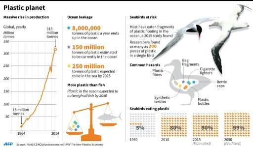 Graphic on plastic production and waste, and seabirds at risk due to floating plastic in the world's seas