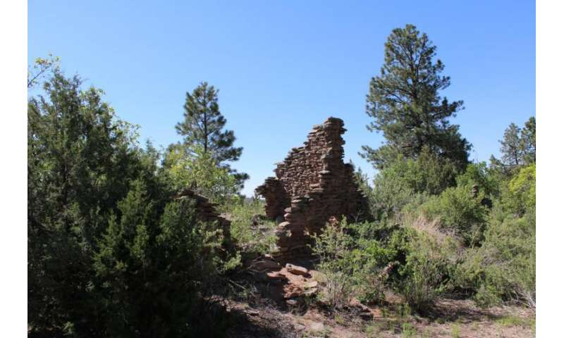 Long-term daily contact with Spanish missions triggered collapse of Native American populations in New Mexico
