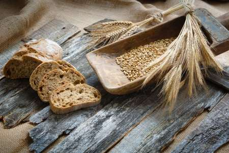 Milestone resource in wheat research now available for download