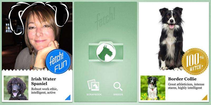 New Microsoft Garage app uses artificial intelligence to identify dog breeds