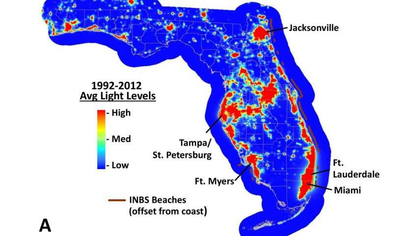 Satellites show Florida beaches becoming darker, and that's good for sea turtles