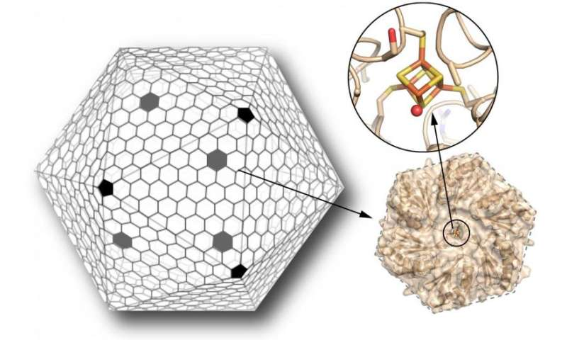 Scientists take key step toward custom-made nanoscale chemical factories