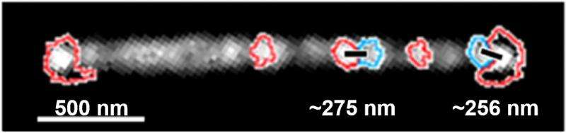 Too-few proteins prompt nanoparticles to clump