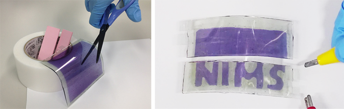 Scientists develop cuttable display sheets