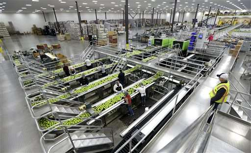 Washington's new apple joining a changing industry