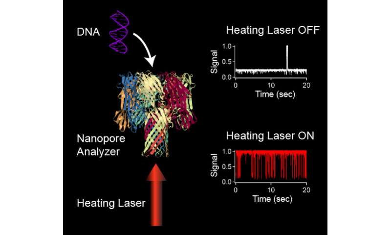 Researchers develop new DNA analysis technique using infrared laser heat