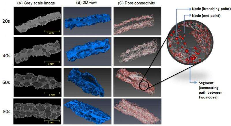 3-D micro X-ray images help answer questions about fried foods' internal structure