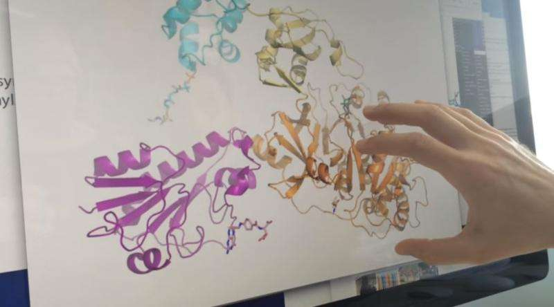 3-D images of megaenzymes may lead to improved antibiotics