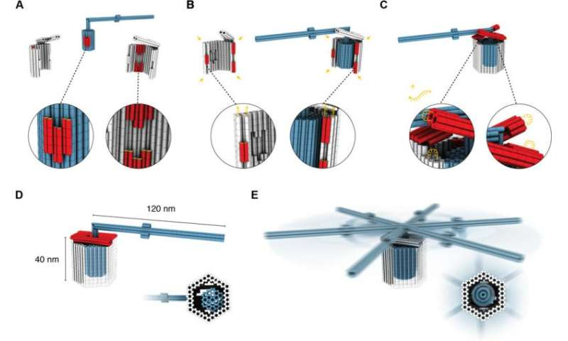 Researchers build nanoscale rotary apparatus using tight-fitting 3D DNA components