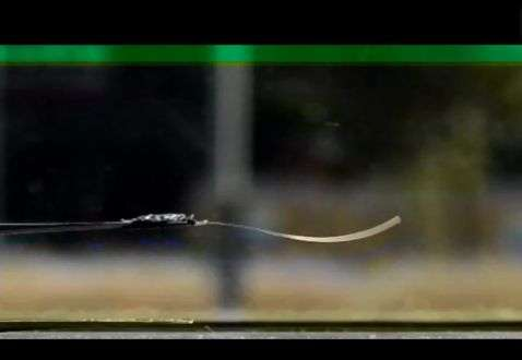New plastic material begins to oscillate spontaneously in sunlight.
