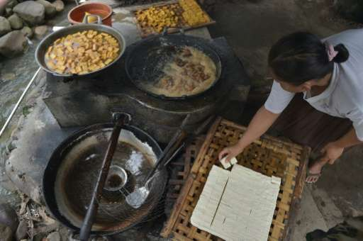 An Indonesian woman fries tofu in the village of Kalisari, Banyumas, in Central Java