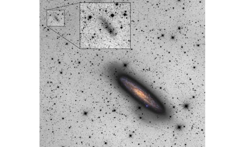 Astronomers spot a faint dwarf galaxy disrupting a nearby giant spiral galaxy