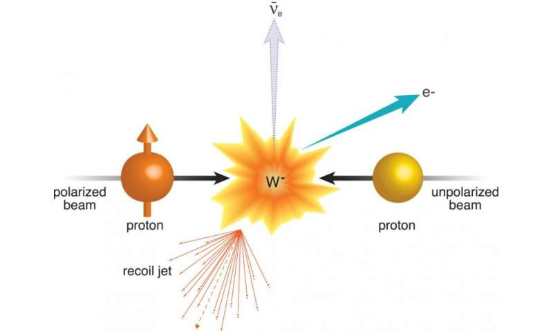 A view of the colorful microcosm within a proton