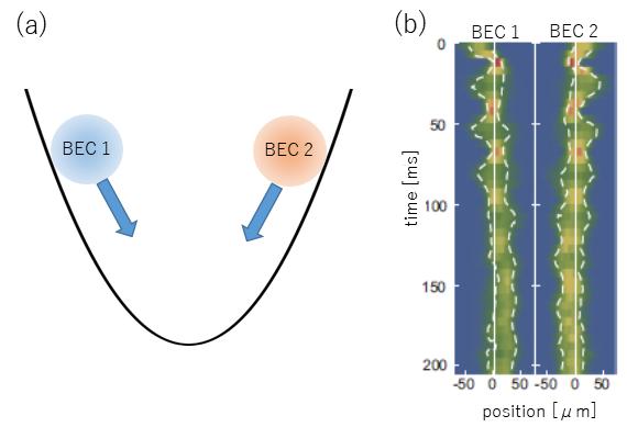 Bose-Einstein condensates miscibility properties reveal surprises