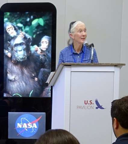 British primatologist Jane Goodall and scientists have signed an open letter expressing concern about the use of gene drives in