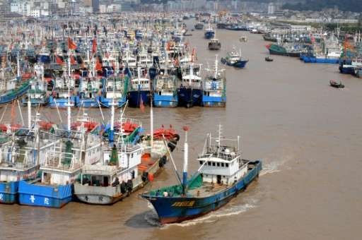 Currently, about 12 percent of the 90 million tonnes of fish harvested every year come from the high seas, but that percentage c