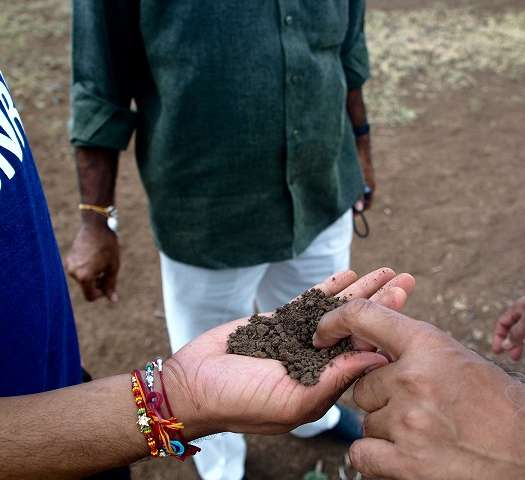 Desilting ponds in India benefit farmers, environment