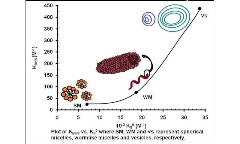 Determination of ion exchange constants for ion exchange processes occurring at the cationic micellar surface