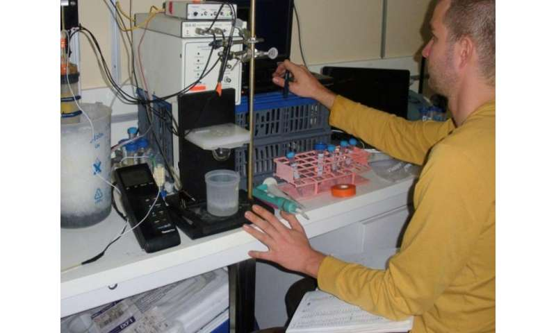 Dr. Jordon Beckler of Mote investigates which chemicals are present in deep-sea sediment.
