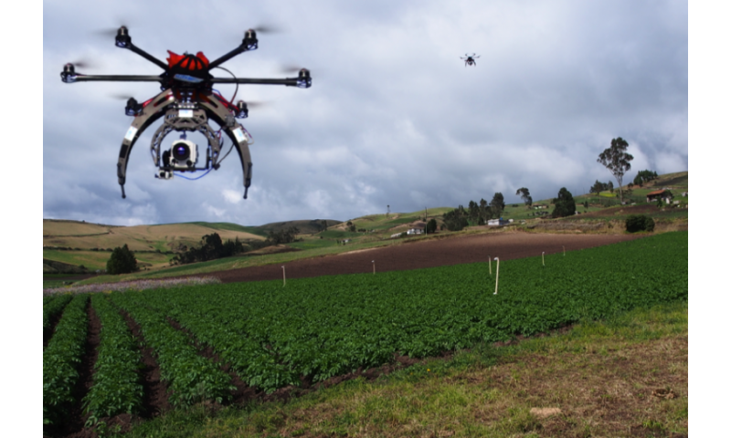 Drones at the service of biodiversity