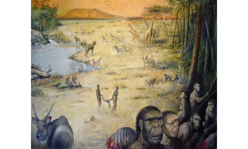 Early human habitat, recreated for first time, shows life was no picnic