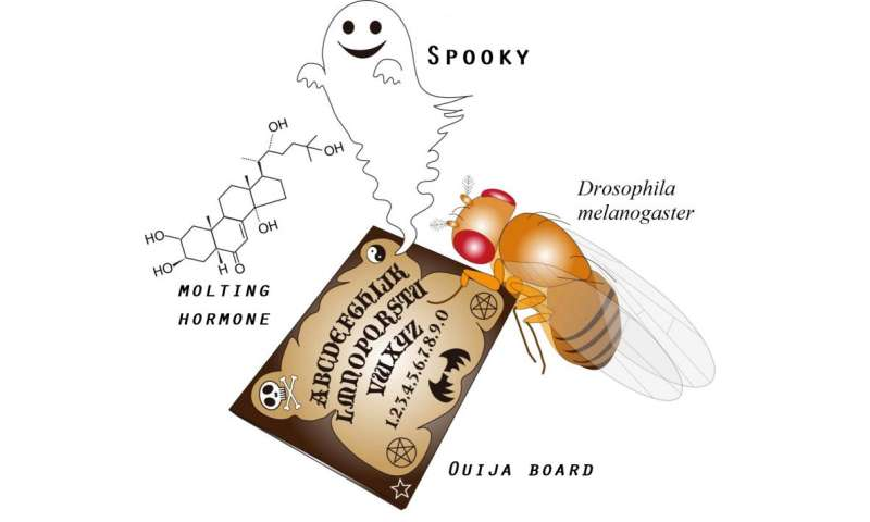 """Expression of a """"Ouija Board"""" protein that can summon """"monster"""" genes"""