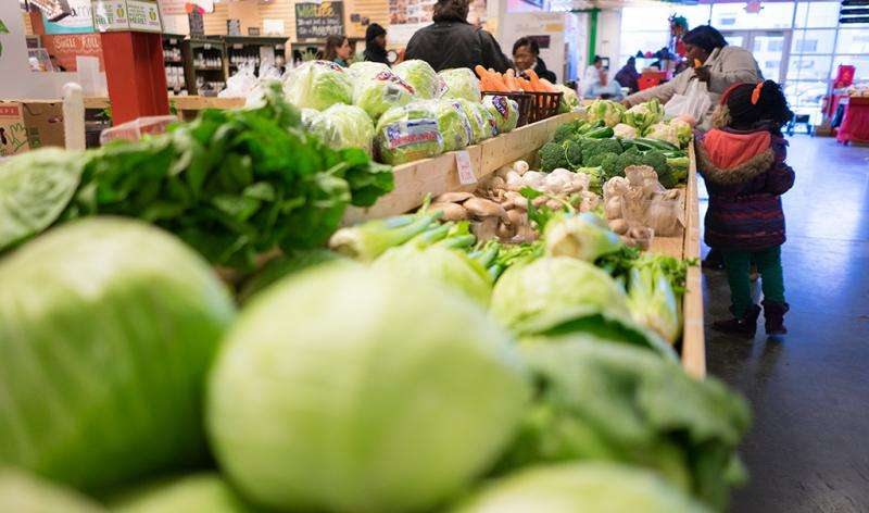 Feeding a city with better food sources