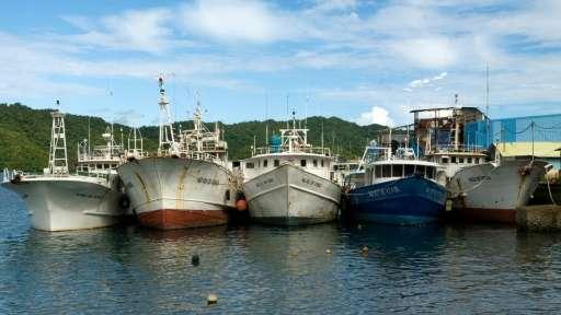 Fishing vessels are seen docked at Malakal Port on Koror island of Palau