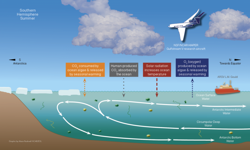 Flying lab to investigate Southern Ocean's appetite for carbon