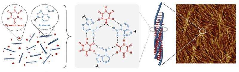 From backyard pool chemical to nanomaterial