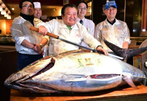 Kiyoshi Kimura, president of sushi restaurant chain Sushi-Zanmai, paid more than $117,000 for the 200kg bluefin tuna, displayed