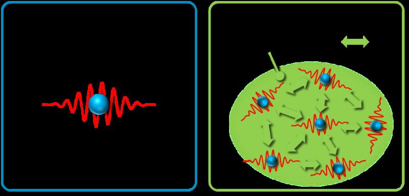 Mysterious behavior of quantum liquid elucidated, a world first