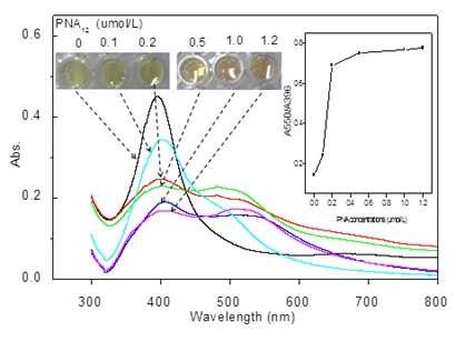 Nanotechnology for label-free colorimetric detection of c-myc mRNA oncogene