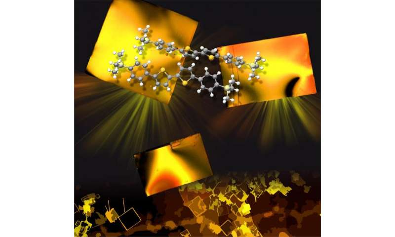 Organic crystals allow creating flexible electronic devices